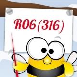 Аккумуляторы R06 (316 элемент ) AA